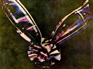 Color-tartan-ribbon_1376_990x742-e1471848217170