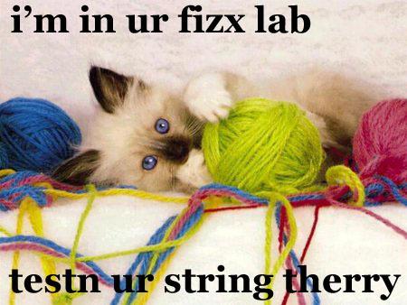 Stringtherry