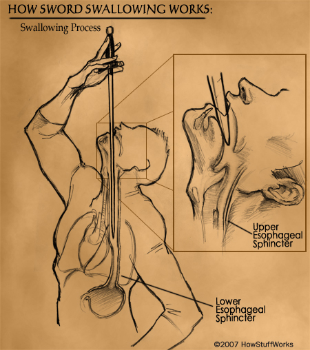Swordswallowing3