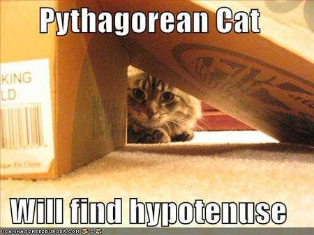 Pythagoracatbox