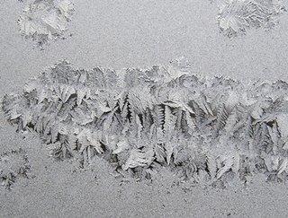 Ice797549